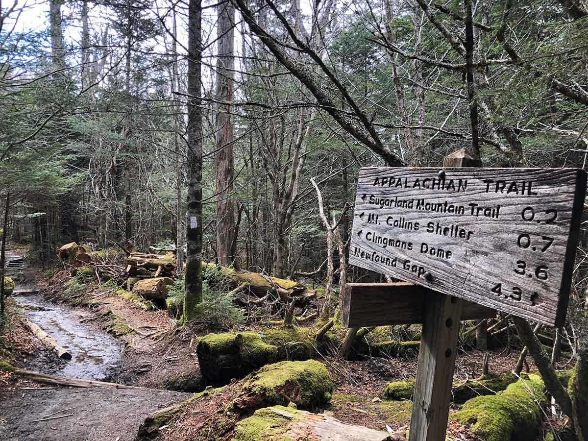 Lost on the Trail: Investigating Hiking Wayfinding and Trail Navigation within the National Parks