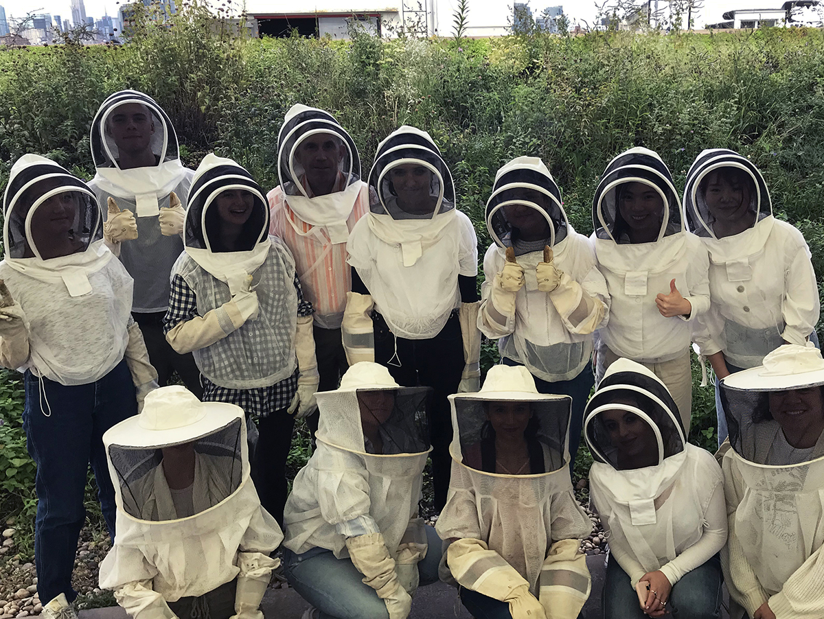 Honeybee Colonies: An Interdisciplinary Approach to the Studio Classroom